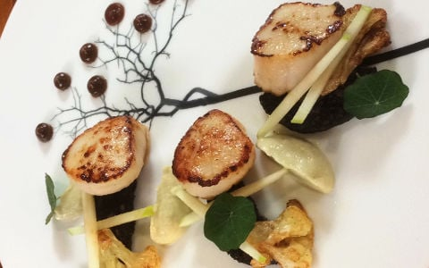 Seared Scallops with Black Pudding and Cauliflower Purée